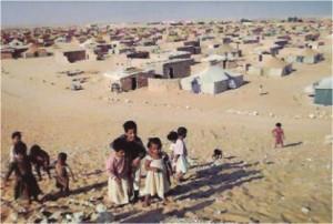 population-tindouf